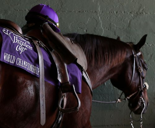 Breeders' Cup Classic: Best bets for Santa Anita's top race