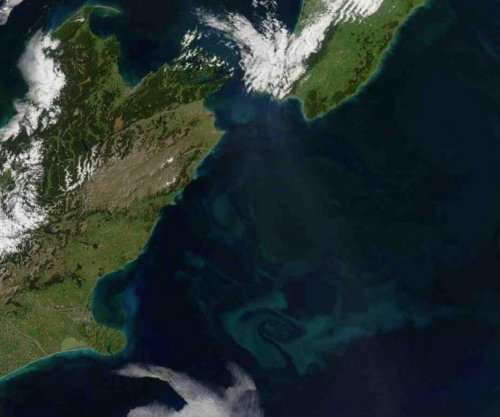 New Zealand plankton blooms proof of global warming's oceanic effects