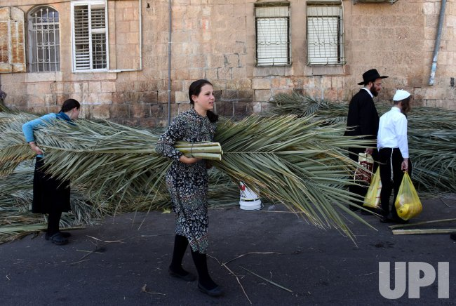 Ultra-Orthodox Jews Carry Palm Branches For Sukkot In Jerusalem