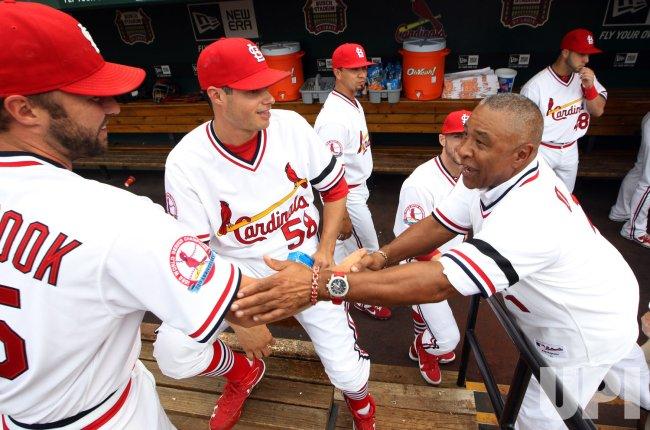 1982 St Louis Cardinals Reunion