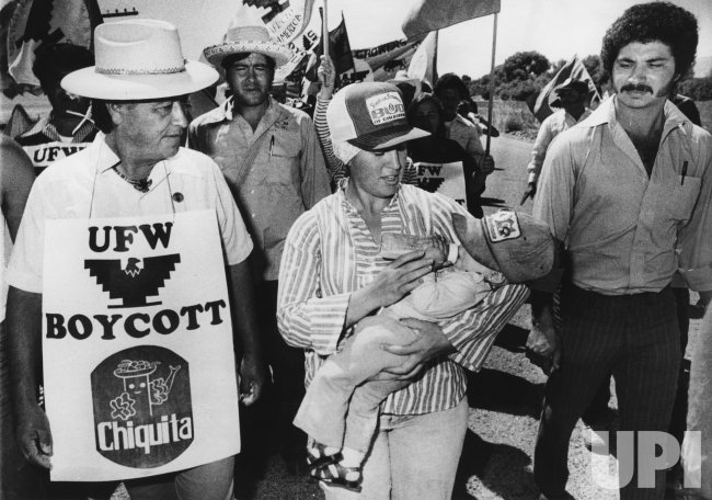 United Farm Workers President Cesar Chavez leads a protest march towards Salinas for a show down with growers