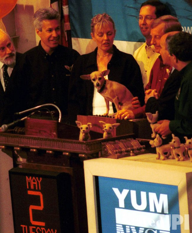 Taco Bell canine becomes first to ring Stock Exchange trading bell