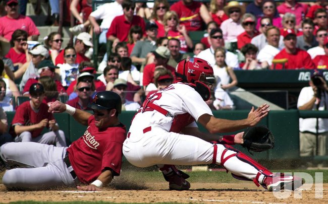St. Louis Cardinals vs Houston Astros baseball