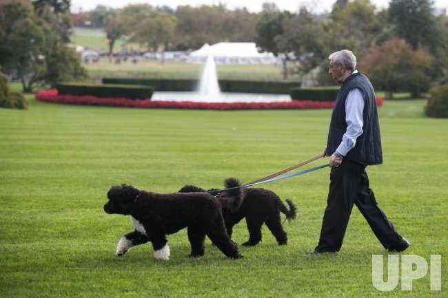 Obama Family Dogs walked in Washington
