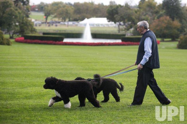 Obama Family Dogs walked in Washington