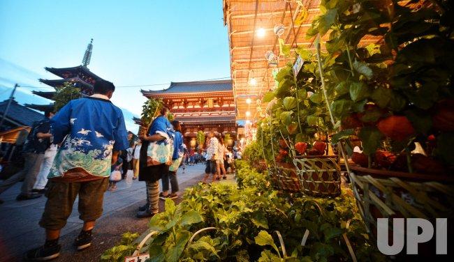 Ground Cherry Fair in Asakusa