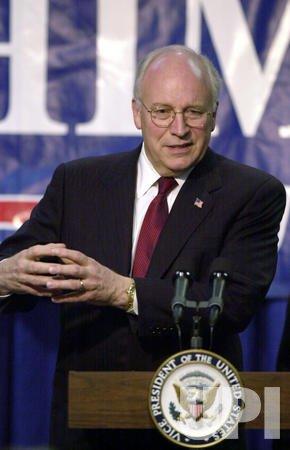 Vice President Cheney