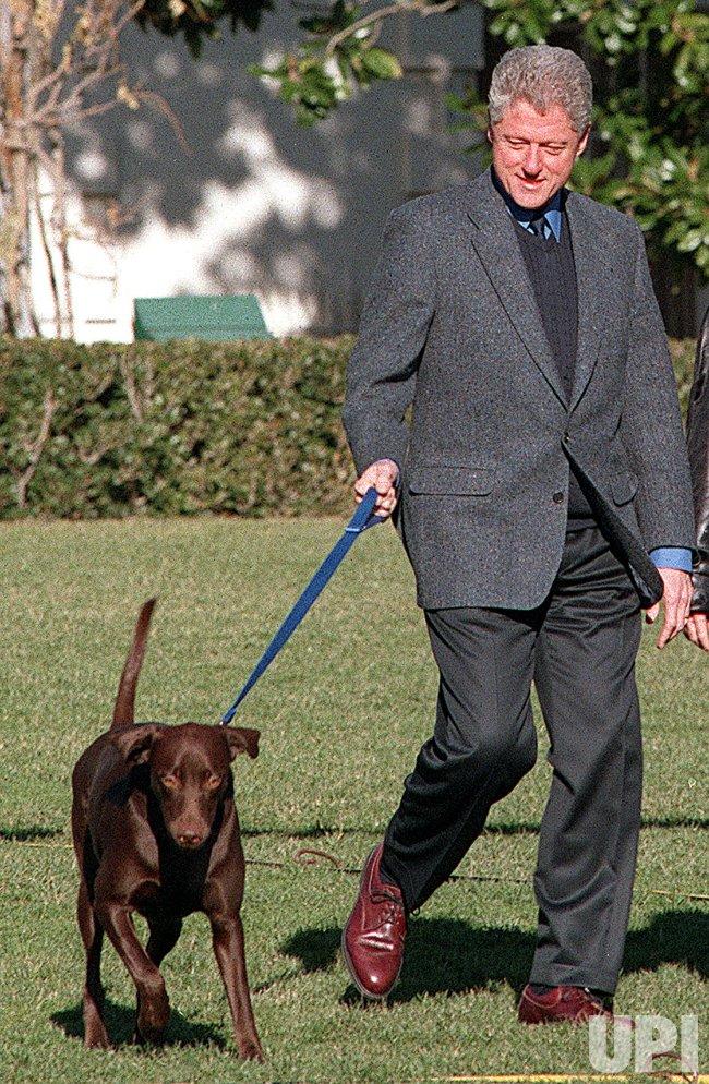 President Clinton's dog Buddy killed by a car