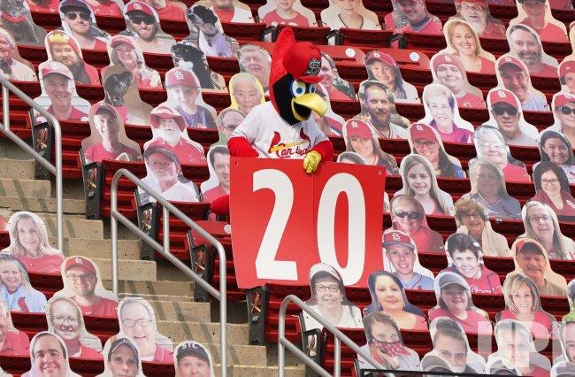 St. Louis Cardinals Mascot Fredbird Honors The Late Lou Brock