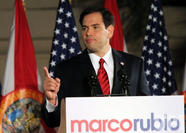 Florida senator elect Marco Rubio celebrates his victory in Miami