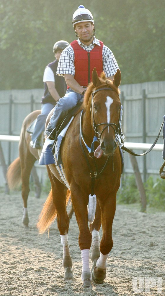 HORSES WORKOUT BEFORE BELMONT STAKES IN ELMONT,NY