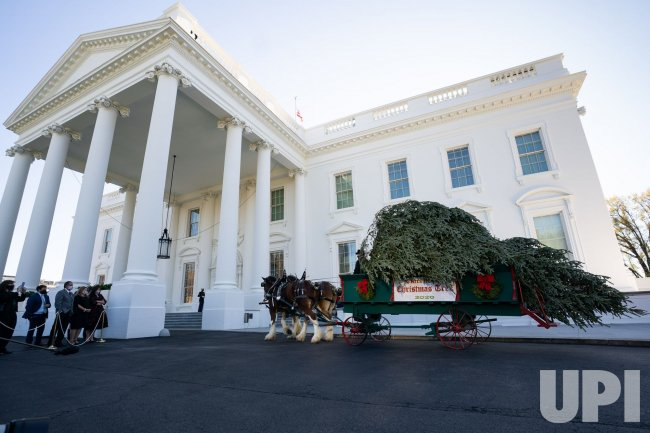 The First Lady receives the White House Christmas Tree in Washington, DC