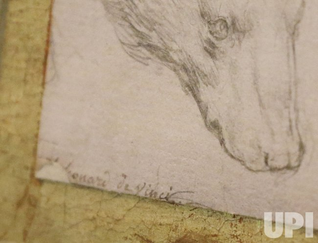 Head of a Bear Drawing by Leonardo da Vinci at Christie's in New York