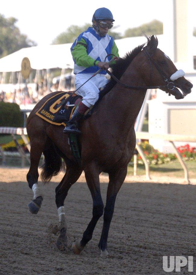 2006 Kentucky Derby Winner Barbaro Euthanized Upi