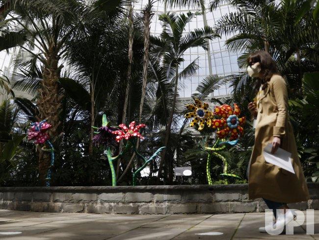 KUSAMA: Cosmic Nature Media Preview in New York