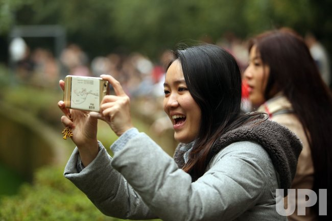 Tourists take videos of pandas at a panda center in Chengdu, China