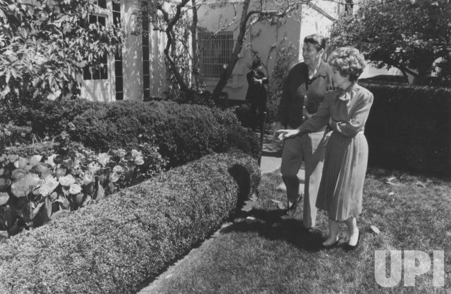 President and Nancy Reagan Stroll in Rose Garden