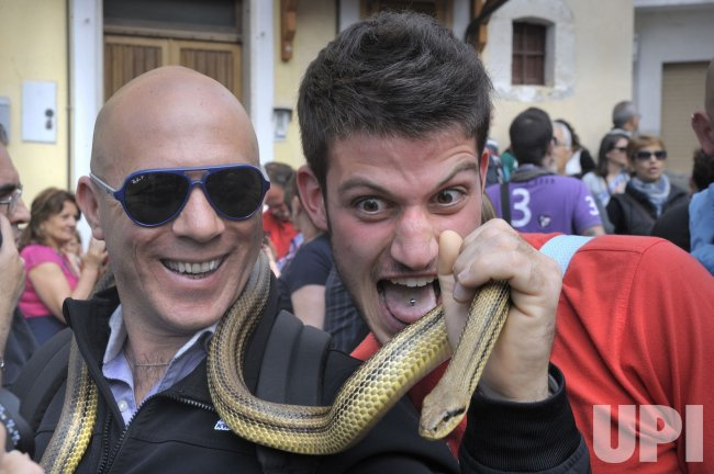 Saint Domenico's snake procession held in Cocullo, Italy