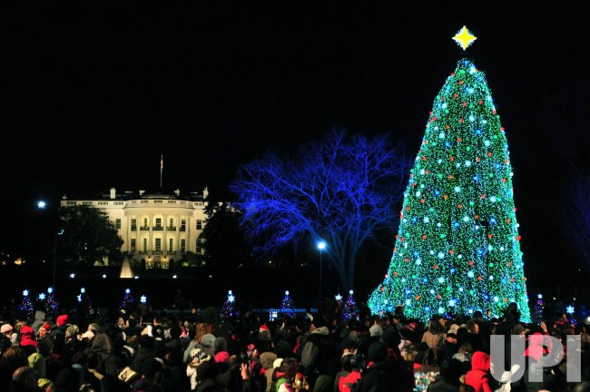 The National Christmas Tree Lighting in Wasghinton