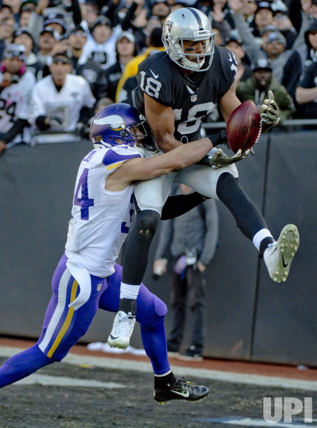Raiders WR Andre Holmes leaps to catch a TD pass