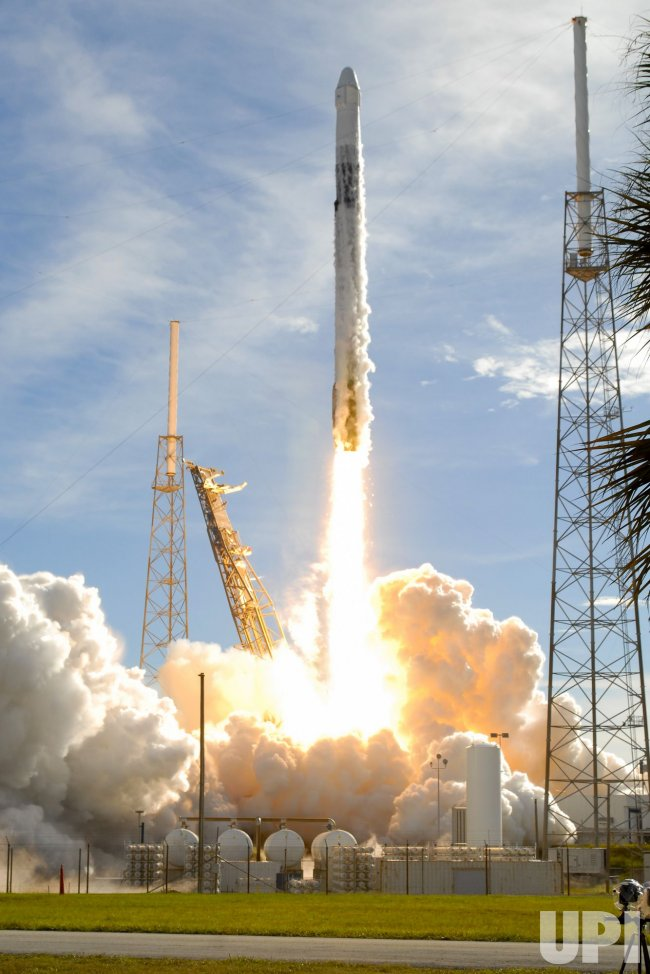 spacex launches rocket - 650×974