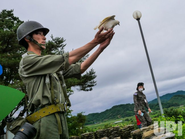 A Soldier Releases a Dove at Korean War Memorial Ceremony