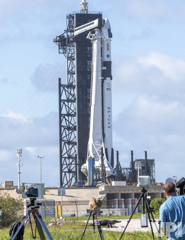 Alligator Crosses Road as the NASA/SpaceX Operational Crew Dragon Prepares for Launch From KSC
