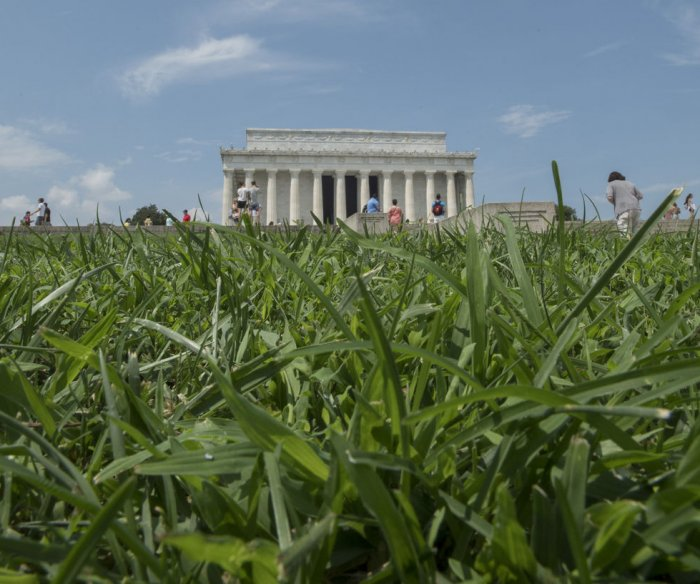 Soil microbiome unaffected by National Mall turf restoration