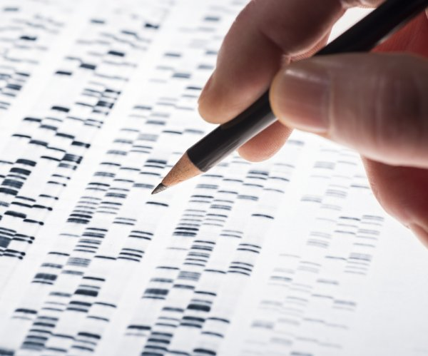 Genetic risk factors for disease can be affected by environment