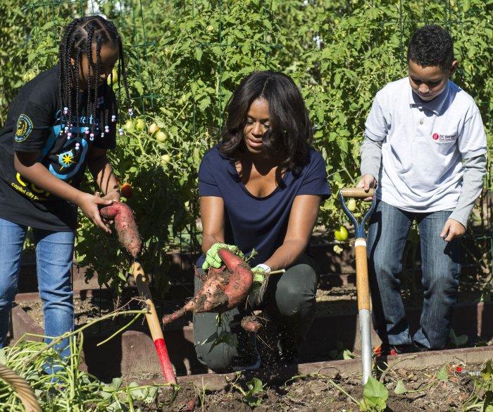 Fall garden harvest at the White House
