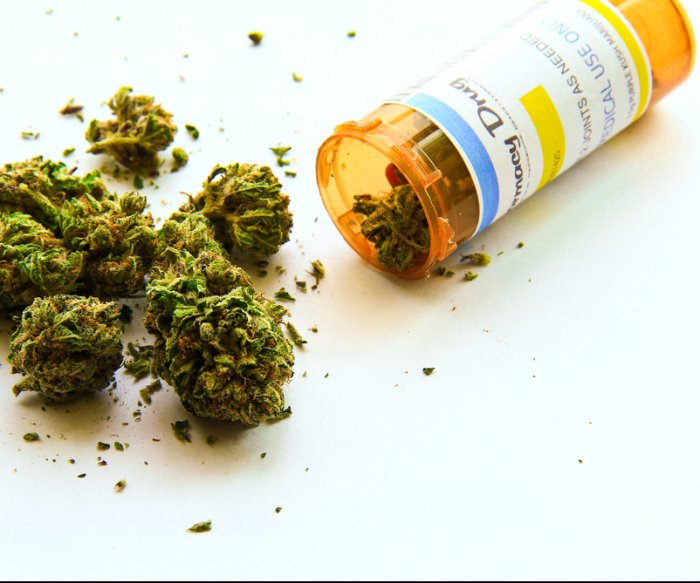 Study finds patients choosing cannabis over opioids