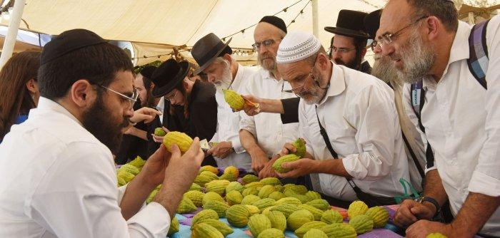Moments from preparation for the celebration of Sukkot in Jerusalem