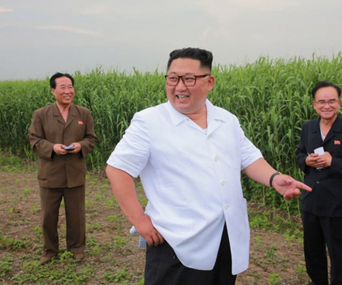 U.N. report: Nearly half of North Koreans undernourished