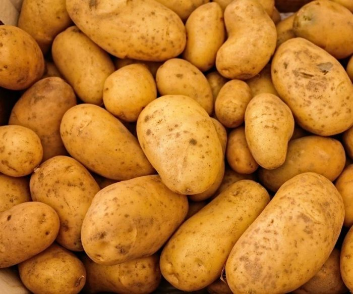 China to import U.S. potatoes for first time -- to make chips