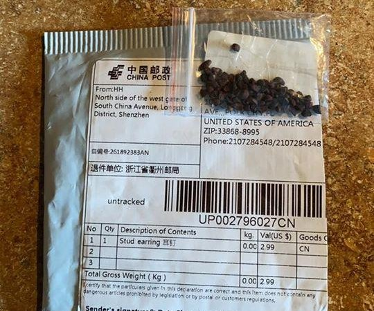 U.S. finds noxious weeds, bug larva in seeds sent from China