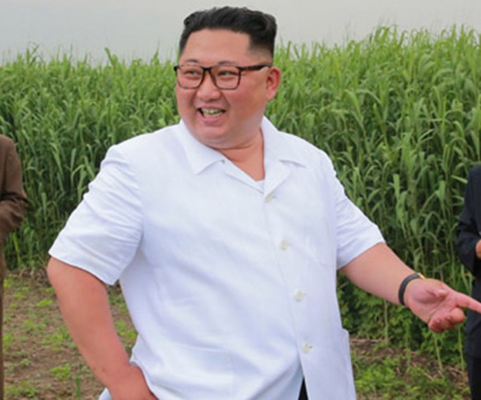 USDA report says 60% of North Koreans are undernourished