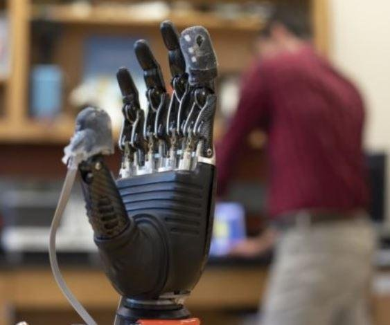 Prosthetic hand gets sense of touch with electronic 'skin'