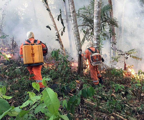 President Bolsonaro: Brazil lacks resources to combat Amazon fires