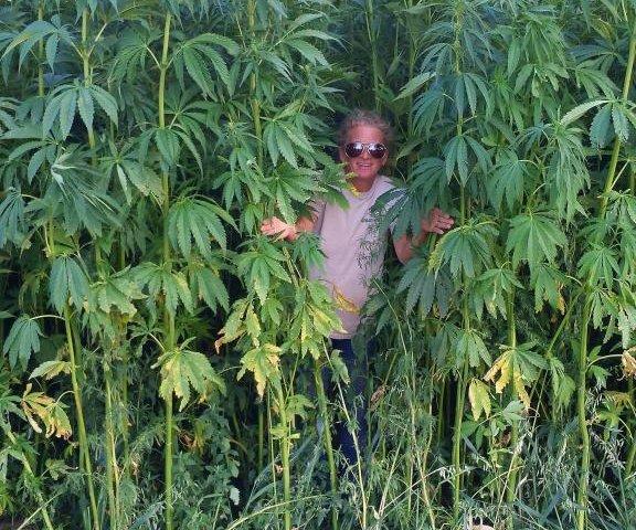 Legalization of hemp opens door for thriving industry