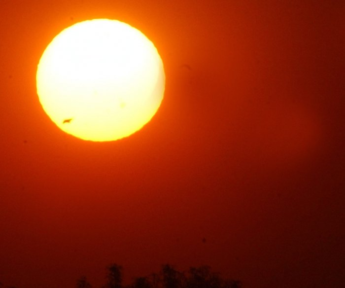 Last month was hottest June on record, scientists say