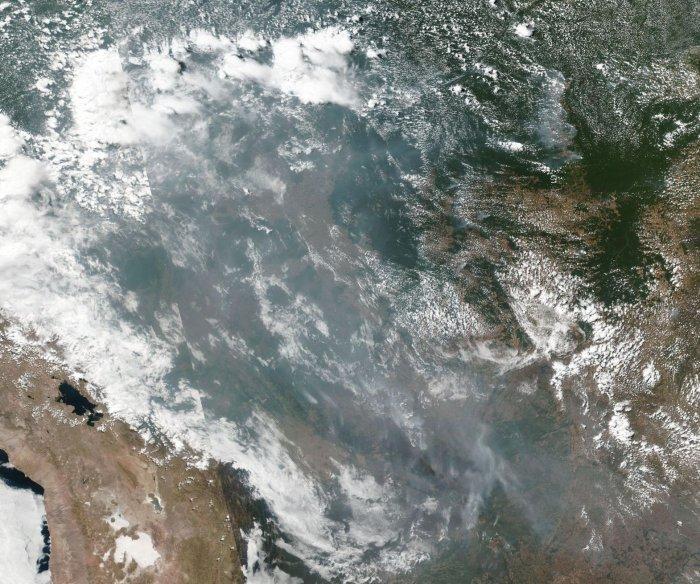 U.S. environmental group pledges $5M to combat Amazon fires