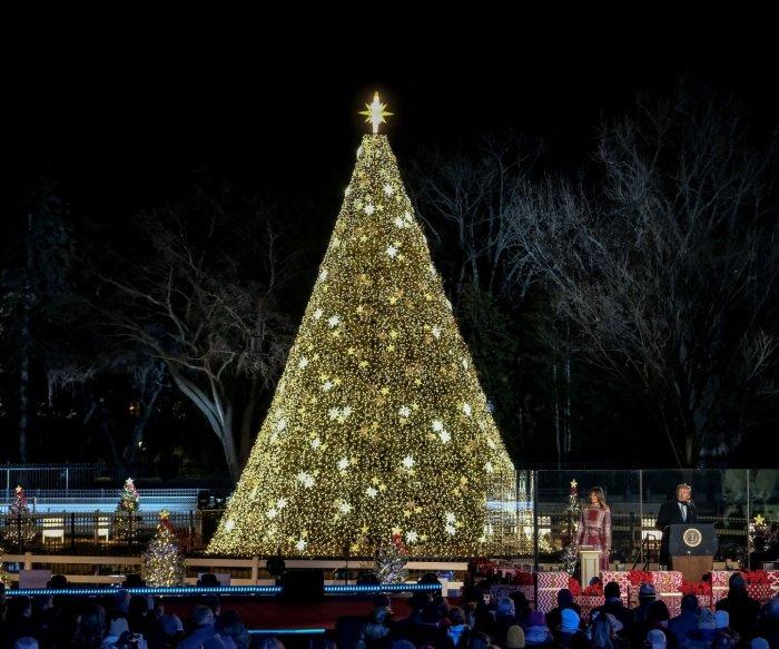 Trumps light National Christmas Tree