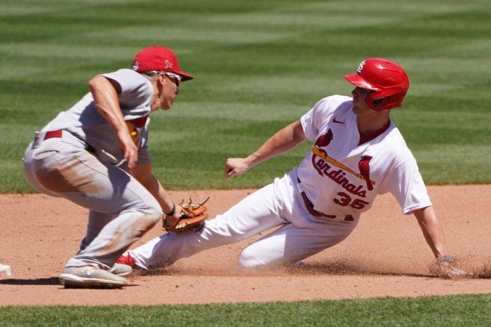 Baseball kicks off with training camps