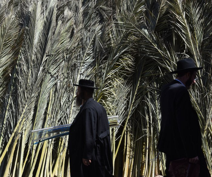 Ultra-Orthodox Jews prepare for Sukkot