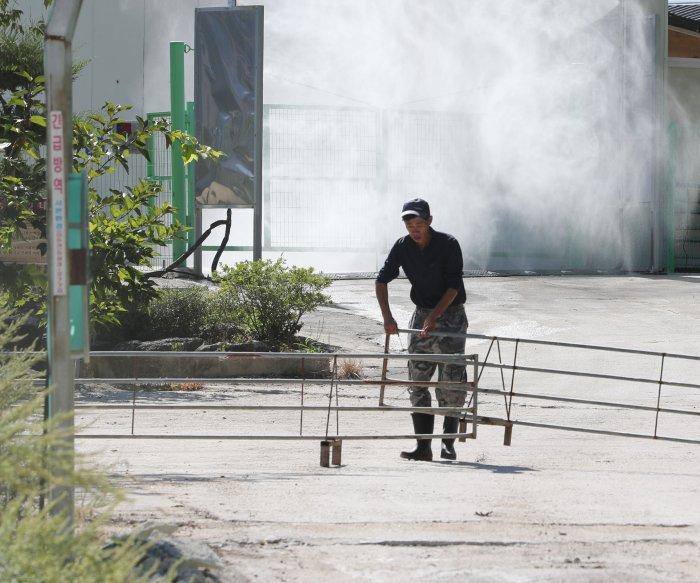 South Korea on alert after 1st African swine fever case confirmed