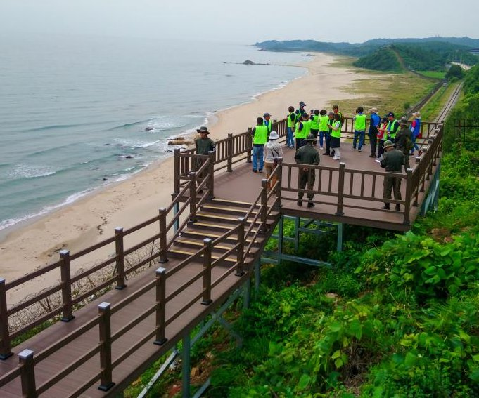 New hiking trails in Korean DMZ offer rare access to forbidden areas
