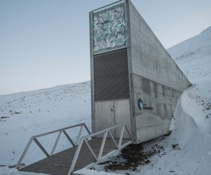 Arctic 'doomsday' seed bunker breached by permafrost melt