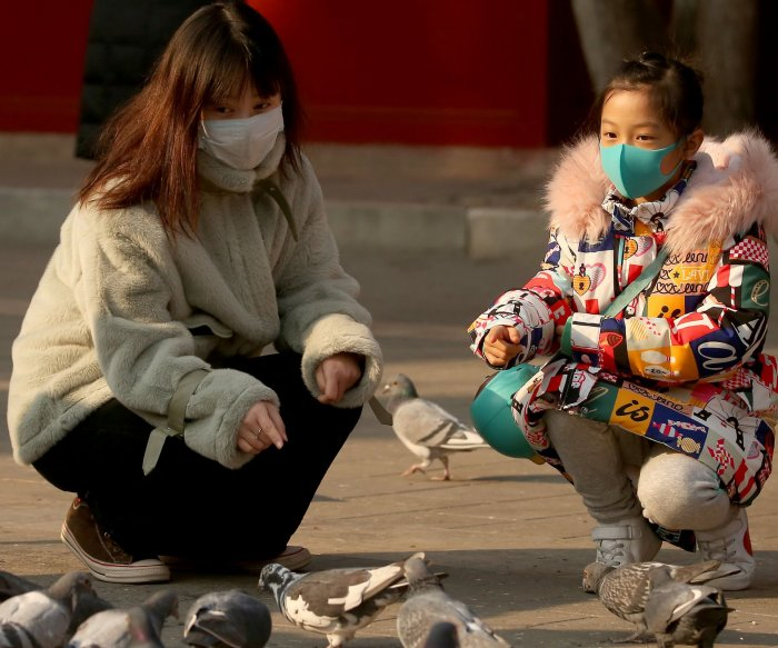 Chinese scientists trace coronavirus outbreak to snakes