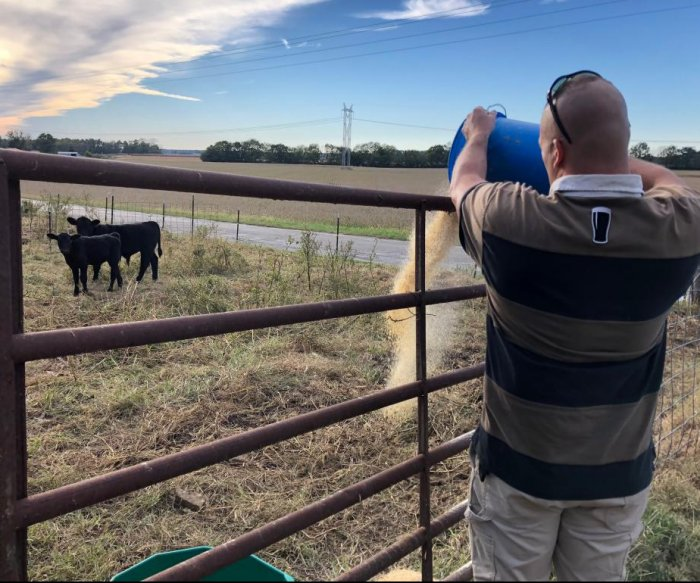 Veterans find healing, purpose in farming, with USDA aid