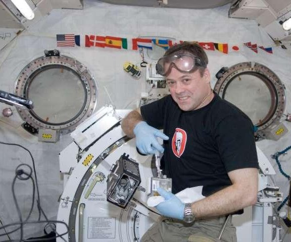 Astronauts grow cucumbers in space to help scientists understand root growth